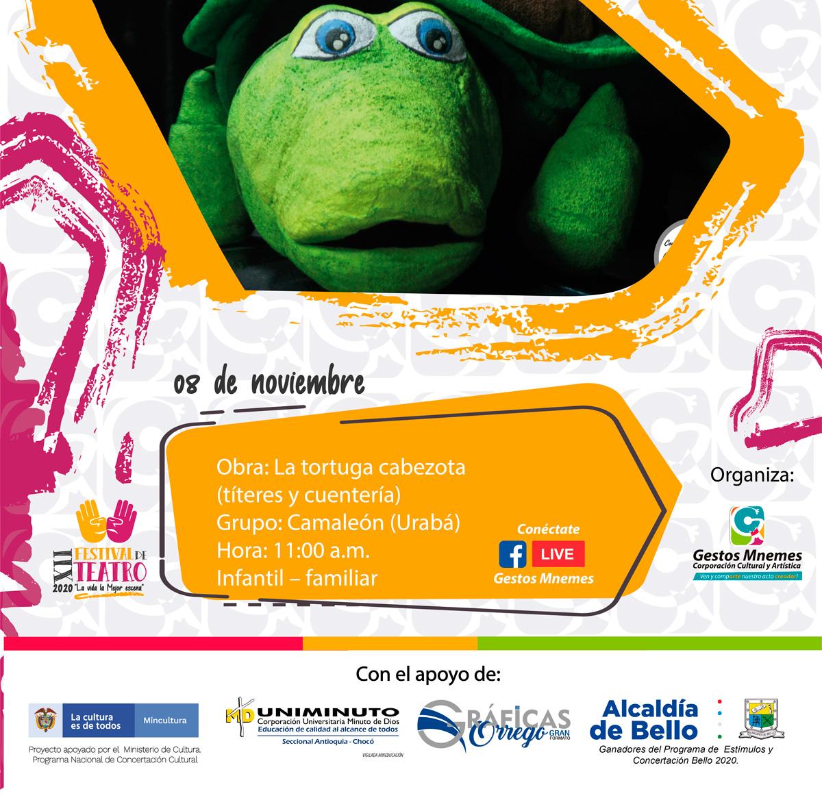 13---08-de-NOV-La-tortuga-cabezona